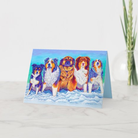Colorful Australian Shepherd Dogs Greeting Card
