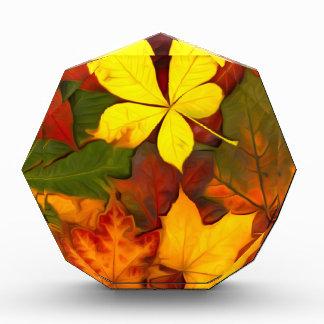 Colorful Autumn Acrylic Award