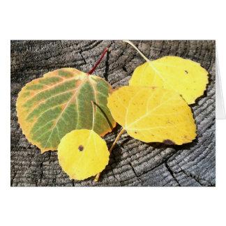 Colorful Autumn Aspen Leaves Card
