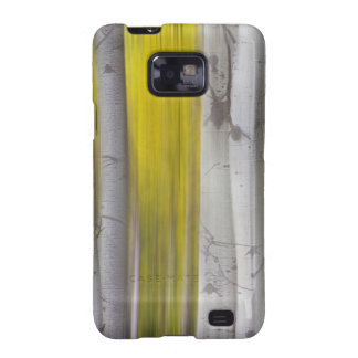 Colorful Autumn Aspen Tree Colonies Dreaming Samsung Galaxy S2 Cases