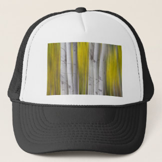 Colorful Autumn Aspen Tree Colonies Dreaming Trucker Hat