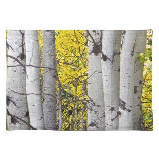 Colorful-Autumn-Aspen-Tree-Colonies.jpg Mantel Individual
