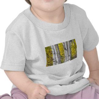Colorful-Autumn-Aspen-Tree-Colonies.jpg Camiseta