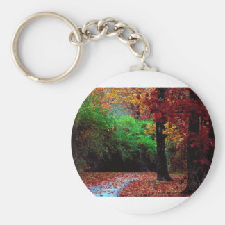 Colorful Autumn Day Keychain