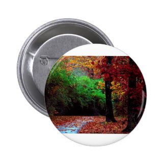 Colorful Autumn Day Pinback Button