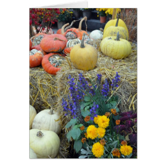 Colorful autumn harvest thanksgiving card