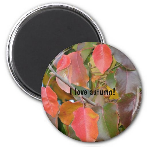 Colorful Autumn Leaves 2 Inch Round Magnet