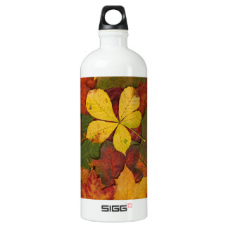 Colorful Autumn Leaves Aluminum Water Bottle