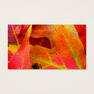 Colorful Autumn Leaves Close-up Business Card