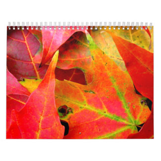 Colorful Autumn Leaves Close-up Calendar