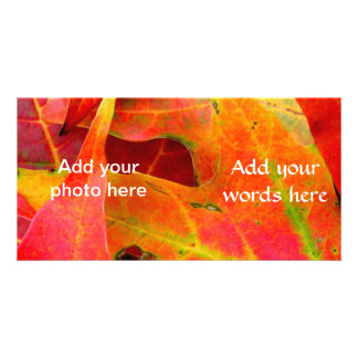 Colorful Autumn Leaves Close-up Customized Photo Card