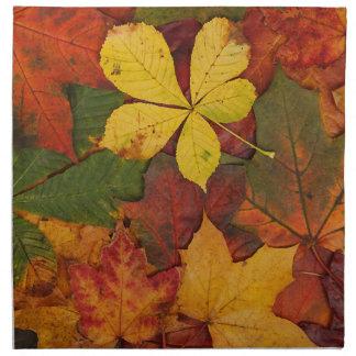Colorful Autumn Leaves Cloth Napkins