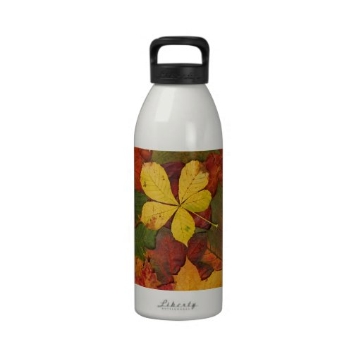 Colorful Autumn Leaves Drinking Bottle