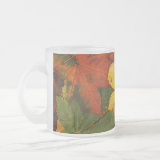 Colorful Autumn Leaves Frosted Glass Coffee Mug