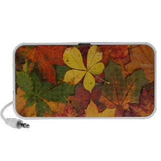 Colorful Autumn Leaves Notebook Speaker