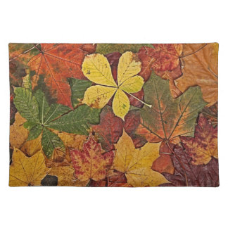 Colorful autumn leaves placemats