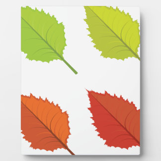 Colorful autumn leaves plaque