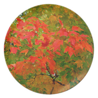 Colorful Autumn leaves plate