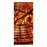 Colorful Autumn Leaves Reflected in Water Full Color Rack Card