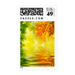 Colorful autumn leaves reflecting in the water postage stamp