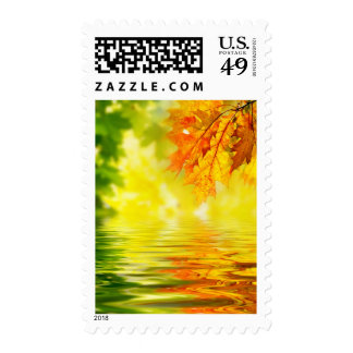 Colorful autumn leaves reflecting in the water postage stamps
