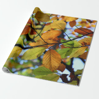 Colorful autumn leaves scenery wrapping paper