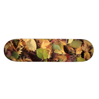 Colorful autumn leaves skateboard deck