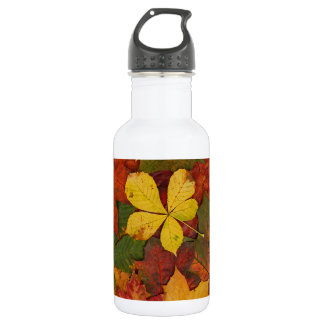 Colorful Autumn Leaves Stainless Steel Water Bottle