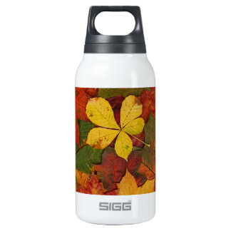 Colorful Autumn Leaves Thermos Water Bottle