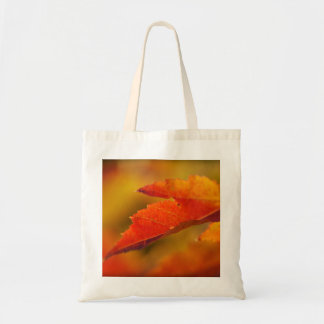 Colorful Autumn Leaves Tote Bag