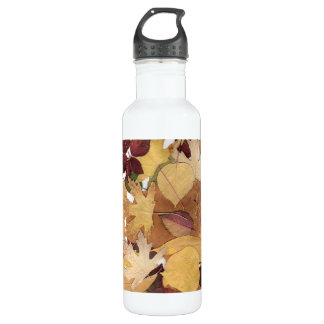Colorful autumn leaves water bottle