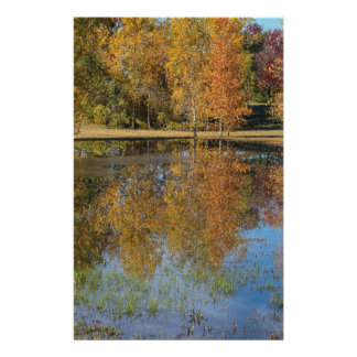 Colorful Autumn Pond Reflections Stationery