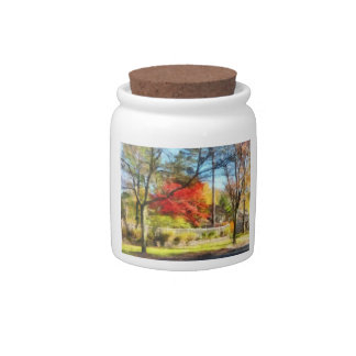 Colorful Autumn Street Candy Jars