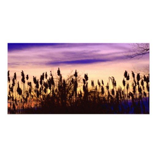 Colorful Autumn Sunset Photo Card