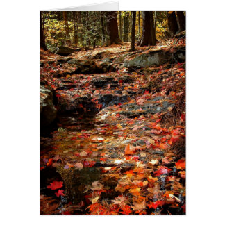 Colorful Autumn Trail in the Poconos Card