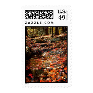 Colorful Autumn Trail in the Poconos Postage