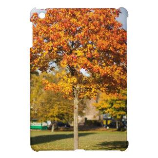 Colorful Autumn Tree Cover For The iPad Mini