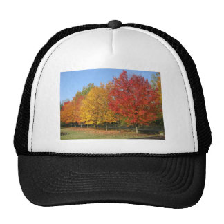 Colorful Autumn Trees Mesh Hats