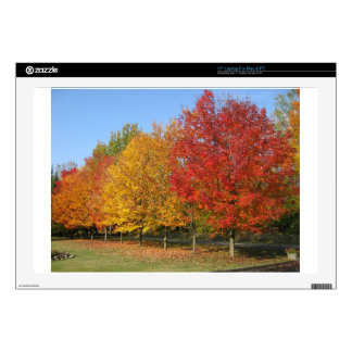 Colorful Autumn Trees Skin For Laptop