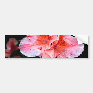 Colorful Azalea Flower Bumper Sticker