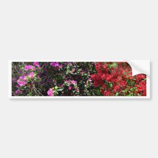 Colorful Azaleas Bumper Sticker
