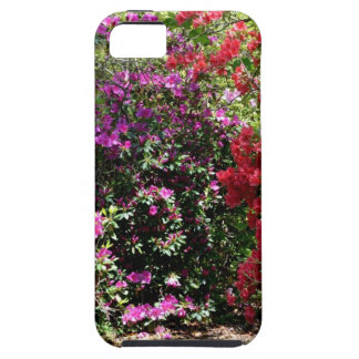 Colorful Azaleas iPhone SE/5/5s Case