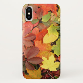 Colorful Background Of Fallen Autumn Leaves iPhone X Case