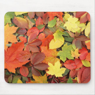 Colorful Background Of Fallen Autumn Leaves Mouse Pad