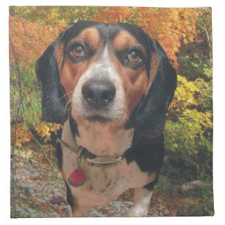 Colorful Beagle Cloth Napkins