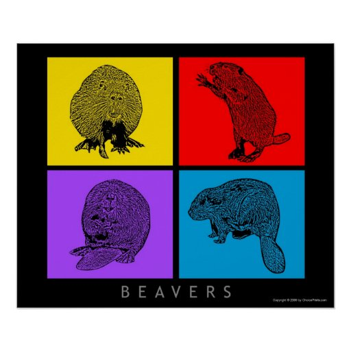 Colorful Beaver Poster
