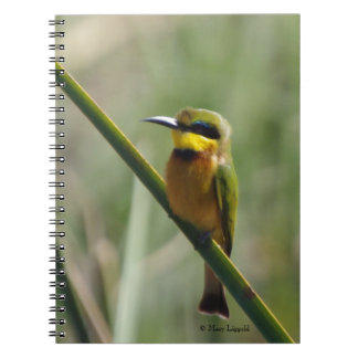 Colorful Bee Eater Journal Spiral Note Books