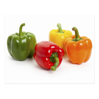 Colorful Bell Peppers Postcard