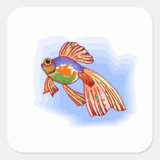 Colorful Betta Fish Square Sticker