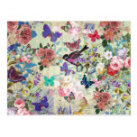 Colorful Bird Butterflies Vintage Floral Pattern Postcard at Zazzle